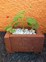 Build an rustic wooden planter