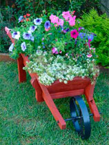 Transform a flower barrow