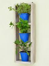 Pot plant shelf unit