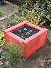 Build a strawberry planter
