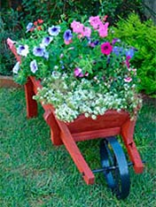 How to turn a wheelbarrow into a flower planter