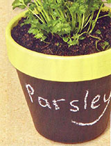 Paint a pot with chalkboard paint or make some plant labels