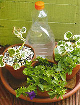 Three ways to water pots