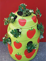 How to make a strawberry planter
