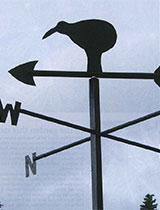 Make a kiwi weather vane