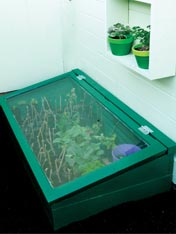 Make an outside cold frame garden box.