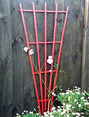 frame for climbing plants
