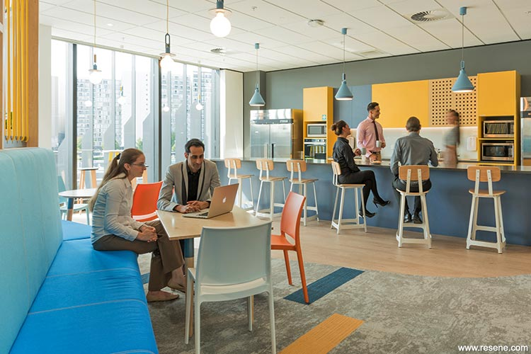 Culture in colour - AA Insurance, New HQ   Resene Products in Action