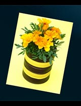 Create this bumble bee plant pot