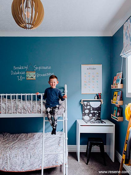 Blue Dude Childrens Bedroom Third Finalist Colour Home Awards 2020