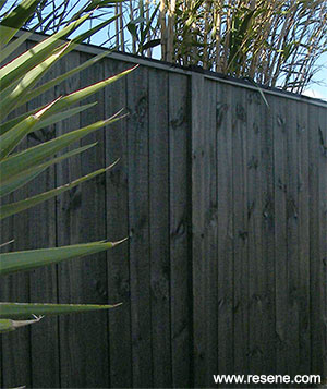 Paint Or Stain Your Fence And Keep It Looking Good