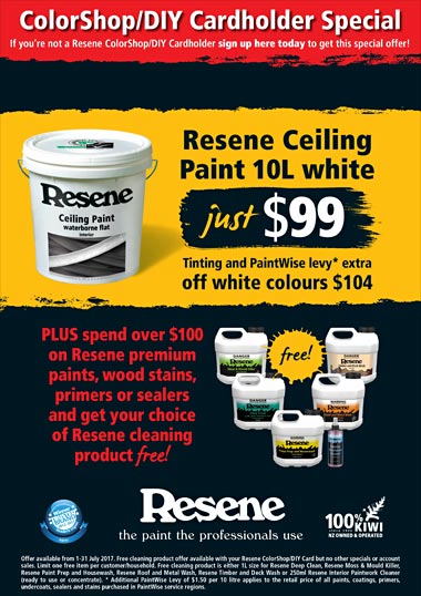 Ceiling paint and free cleaning products promo