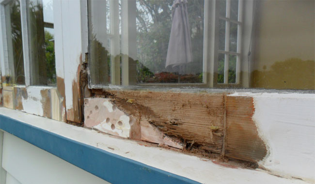 Repair Care Repairing Rot In Wooden Window Frames