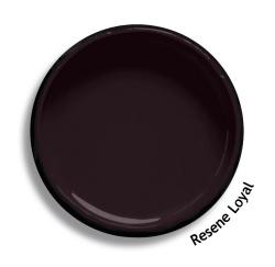 Resene loyal colour swatch resene paints for Black paint swatch