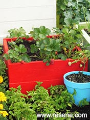 Make a  planter box and paint brightly red